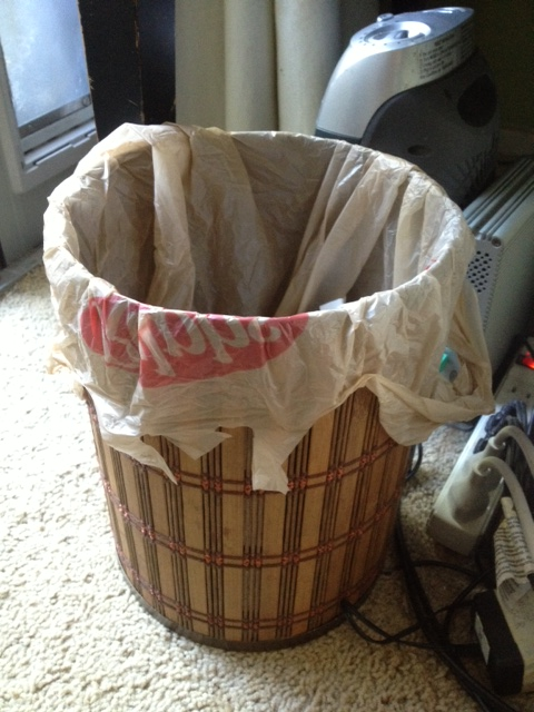 My favorite way to re-use plastic shopping bags.